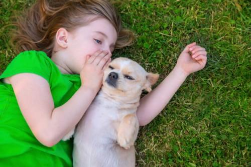 犬と子ども