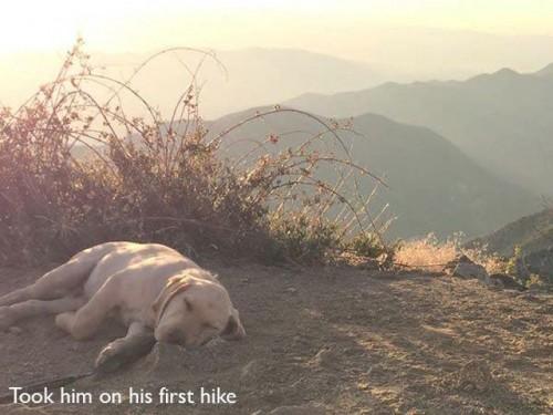 初めてのハイキング