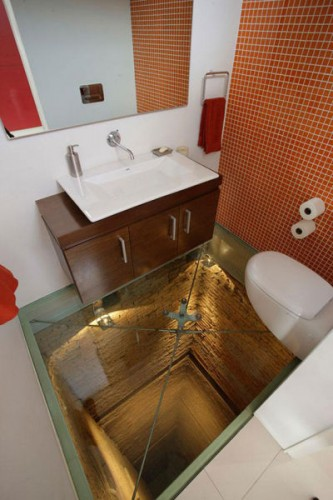 シースルーフロアートイレ