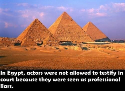 面白い事実