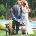 2匹のピットブル犬が恋に落ちたので飼い主たちが結婚!