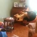 【面白動画】嫌いな人に抱っこされると死んだふりする犬