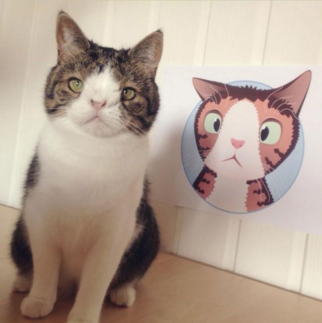 顔が少し変わっているからって問題なく可愛い猫のモンティーさん