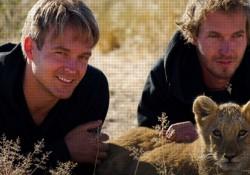 【面白動画】イケメンとライオンがじゃれあう姿以上にいいものってある?