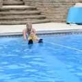水上スキー中の女の子を助けようとする犬