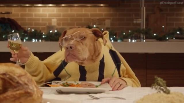【面白動画】13匹の犬と1匹のねこが人間の手を使ってクリスマスディナー