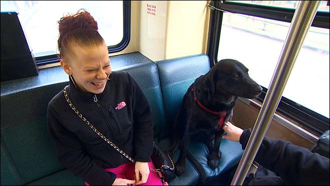 賢過ぎる!可愛すぎる!独りでバスに乗り公園に通う飼い犬