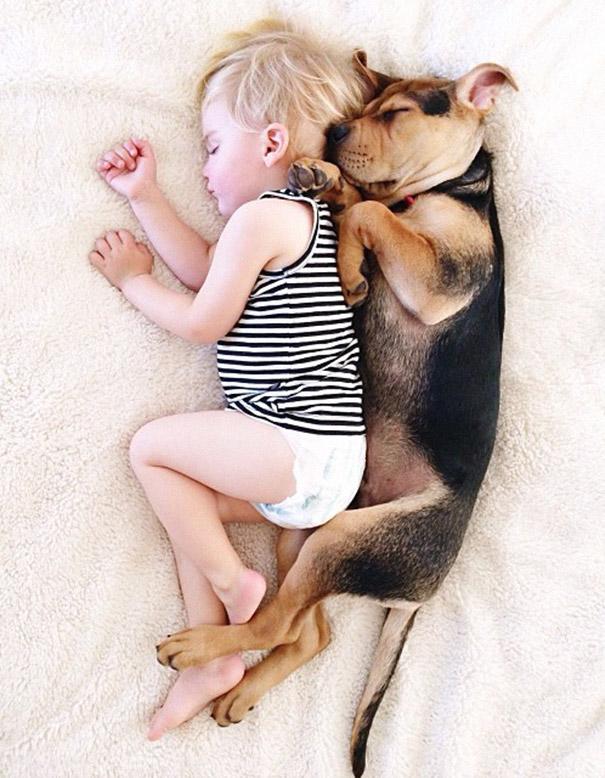 仔犬と赤ちゃんが一緒に寝てるだけで最強の可愛さ