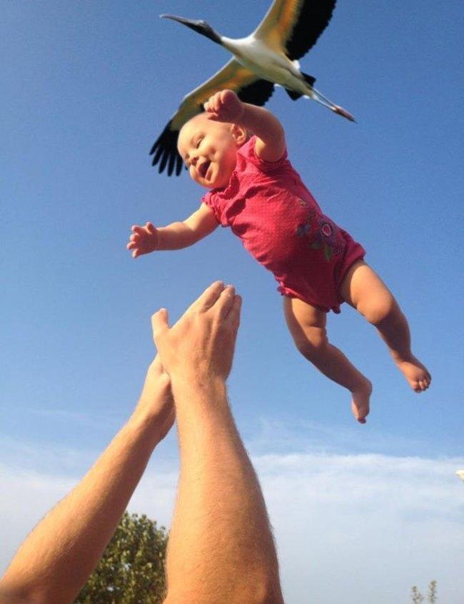 【面白画像】決定的瞬間を捕らえた奇跡の写真