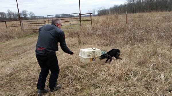 キャリーに閉じ込められ荒野に捨てられていた犬の話