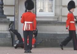 【動画】バッキンガム宮殿の護衛がすってんころりん。