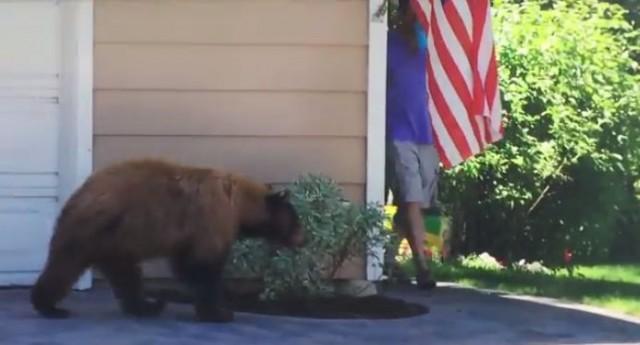【面白動画】ある日、家の角でクマさんと出会った。さあどうなる?