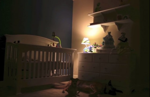 【動画】妊婦さんのストップモーション動画がおしゃれで素敵