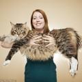 longestcat