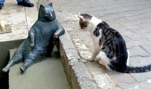 statuewithcat