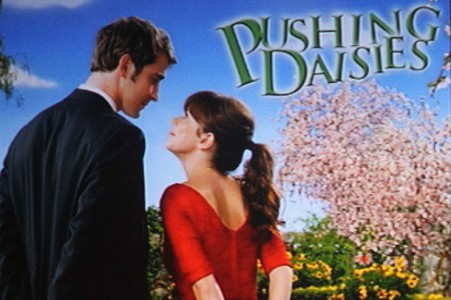 pushingdaisies-610x406